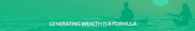 the wealth network formula