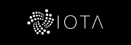 iota coin review